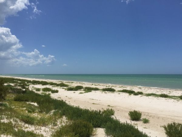 Four lots beach front for sale at Xtampu Yucatan