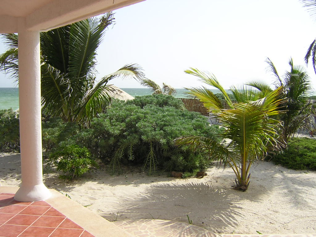 Furnished beach house at San Benito. Terrace