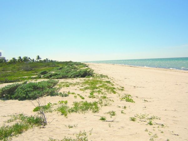Beachfront land for sale at Xtampu