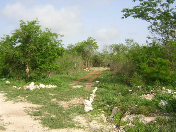 Land lot ideal for ecological hotel, country house at Acanceh, Yucatan