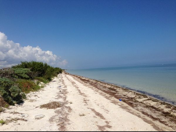 Beachfront property for sale Yucatan (Santa Clara)
