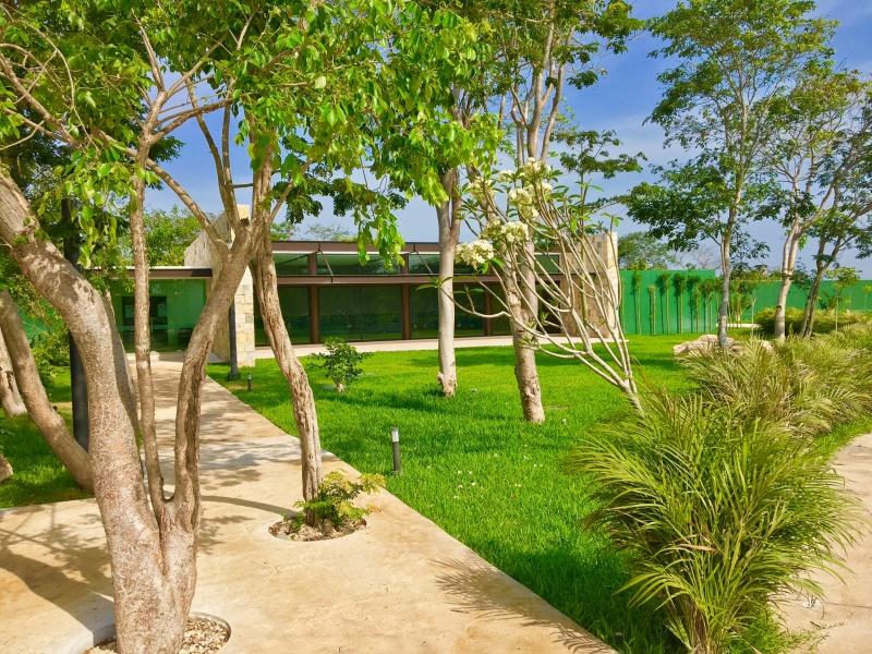 Residential land north of Merida at Parque Natura Residencal. Gardens