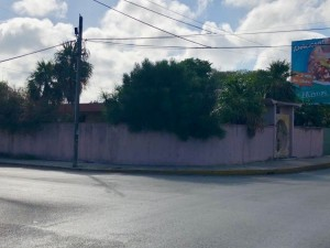 Commercial property at Colonia Mexico (corner on avenue)