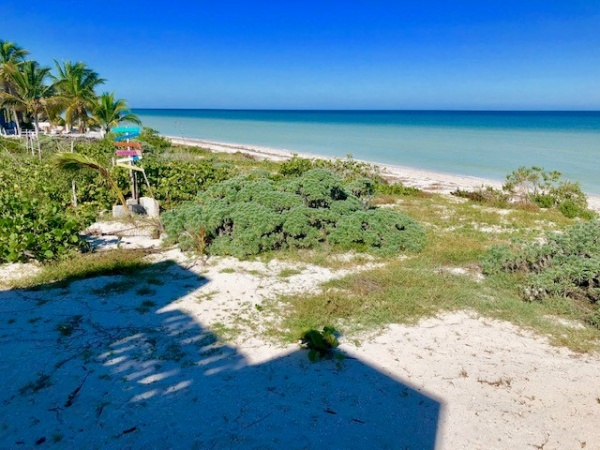 Beach front villa for sale at San Benito. Dune