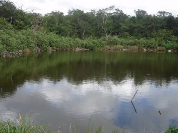 View of the ojo de agua. Henequen Hacienda Silil